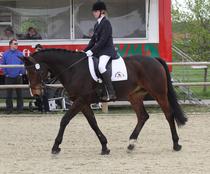 Sieger: Nele und Clitschko