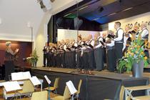 In Festlaune: Aus voller Kehle singen die rund 40 Stimmen des Männerchors Rieden nach dem Takt von Dirigentin Yvonne Morgenthaler.