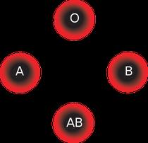 Ich habe: Blutgruppe= 0___Rhesusfaktor= Rh -positiv (D +)