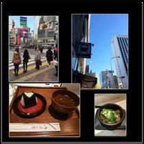 渋谷駅前!三田駅前!羽田空港の和食