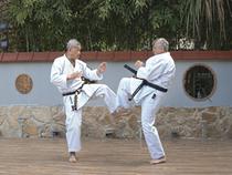 Уэчи-рю Каратэ-до (Uechi-ryu Karate-do)