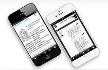 Smartphoneoptimierung, mobile Version und Standard