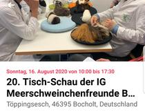 Quelle: https://facebook.com/events/s/20-tisch-schau-der-ig-meerschw/279131809812852/?ti=cl