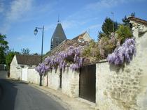 Rue Louis Blanchet - Aumont en Halatte - Oise