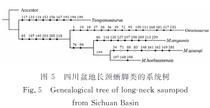 四川盆地竜脚類の系統樹
