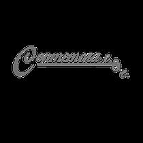 serigrafía-acrílico-llaveros-llavero-Sheaffer-crossMONEDAS-CONMEMORATIVAS-oro-plataley.925-oro14k-oro12k-oro-12-k14-k-moneda-troquelada-troquelado-metalrex-metal-rex-metal-zamac-metal-latòn-rodio-rodio-anillos-graduaciòn-reconocimientos-en-madera-BOTARGAS