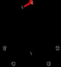 Grundstruktur Musca-Aurine