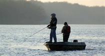 Süßwasserfische haben zum Teil fast so viele gesunde Omega-3-Fettsäuren wie Meeresfische. Fang und Zucht sind allerdings wesentlich ökologischer. Foto:www.OlegTretiakov/Fotolia.com
