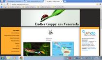 Endler Austria Homepage