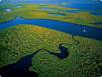 Rio Amazonas aus der Vogelperspektive