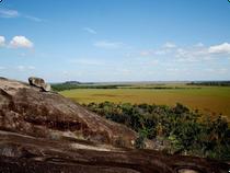 Blick vom Cerro Morrocoy - Llanos - Kolumbien
