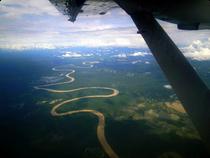 Blick auf den Urwald im Choco - Kolumbien
