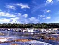 Puerto Rastrojo - Chirbiquete - Kolumbien