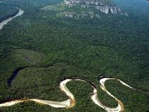 Blick auf den Nationalpark Chiribiquete - Kolumbien