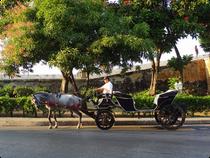 Kutsche an der Stadtmauer - Cartagena - Kolumbien