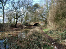 West of Harborne Lane, a section of the Dudley No.2 Canal which is still water-filled.