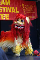 Chinese New Year 2008, Photograph by Tim Ellis on flikr - copying permitted - Creative Commons Licence: Attribution-Non-Commercial 2.0 Generic. See Acknowledgements for more on Creative Commons.