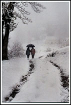 Neige à Uxtubil - Alçay - Pyrénées Atlantiques - 64 ©JlS