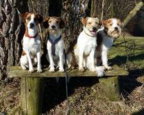 so brave vier Freunde