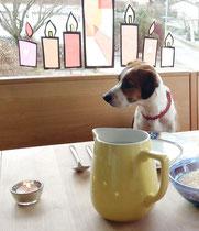also Debby wäre schon am Tisch und bereit fürs Mittagessen... wo bleiben die denn?
