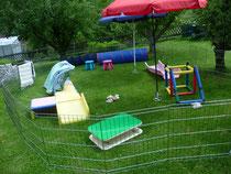 noch ist er leer, der Aussenauslauf... wir hoffen, dass im Sommer wieder fröhliches Welpengewusel unseren Garten füllt.