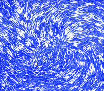Blauer Schwarm 04   2020, 160 x 140 cm, acrilico su tela
