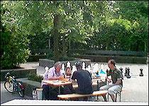 Schul-Schach 2008