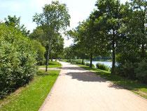 Gepflegte Wege um den See laden zum Spazieren und zum Joggen ein