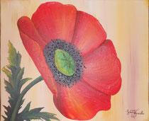 """""""Mohn"""" Acryl auf Leinwand, 70 x 50cm (verkauft)"""
