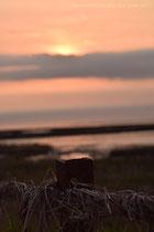 Sonnenuntergang am Strand von Dornumersiel