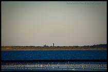 Blick auf den Wasserturm von Langeoog!!!