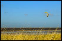 Kitesurfer im Strandgras