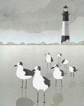Seagulls Lighthouse