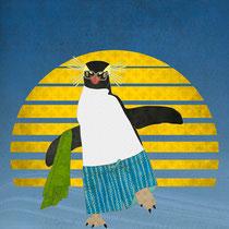 Northern Rockhopper Penguin on Spring Break