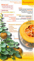 Pumpkin health benefits. Infographic