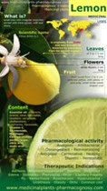 Lemon benefits infographic
