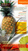 Pineapple infographic