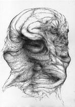 Fièvre(s) I/graphite & mine de plomb sur papier/30x21cm/2014.