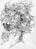 Découverte/mine de plomb sur papier/42x30cm/2015/collection particulière