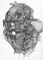 De Notre Passage/graphite sur papier/42x30cm/2014.