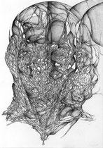 La Dérive/graphite sur papier/30x21cm/2014.