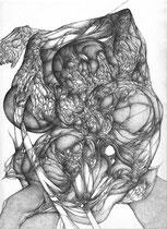 Origines/graphite sur papier/42x30cm/2014.