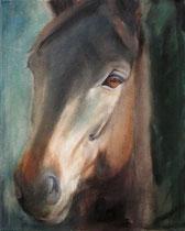 Trakehner Marenko, Öl auf Baumwollgewebe, 40 x 50 cm, 2007