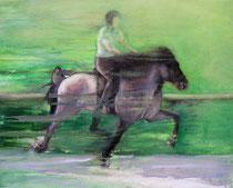 Nicole Mertz auf Odin vom Moorflur, Öl auf Baumwollgewebe, 40 x 50 cm, 2007