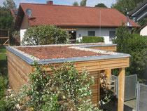Gartenhaus mit begrüntem Flachdach