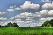 Schleswig-Holsteiner Landschaft