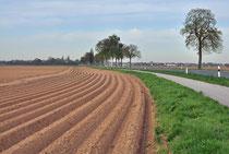 vielspurige Strecke, bei Aldekerk