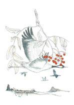 Herbstzeitzauber - Kraniche und Eberesche