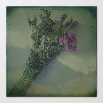 """Lilacs"" artistic vintage style photograph"