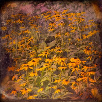 vintage style photo, textured and handpainted, yellow jungle, yellow flowers, retro photo style